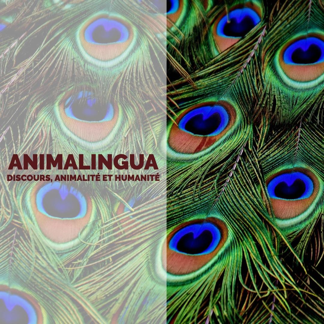 Animalingua